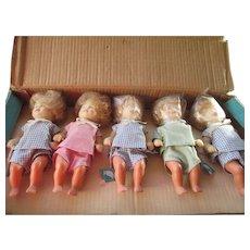 Dolls Schildkrot-Puppen Quintets 16/18 Turtle