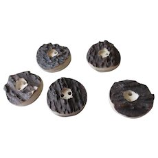 Caribou Antler Buttons