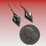 Pair of Abalone 925 Silver Wire Earrings