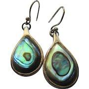 Silver 925 Abalone Wire Earrings