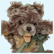 Adorable Vintage Frosted Cinnamon Mohair Steiff Zotty Teddy Bear No ID