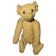 """Steiff 5"""" Teddy Bear with button"""