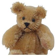 Fabulous Little Mohair Teddy Bear Change Purse Artist Made
