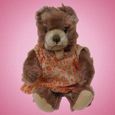 Super Cute Vintage Steiff Zotty Teddy Bear with Button