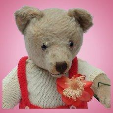 Adorable Vintage Steiff Well Loved Teddy Bear