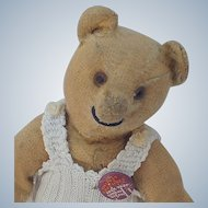 Old Worn to Death But Still Smiling Steiff Teddy Bear
