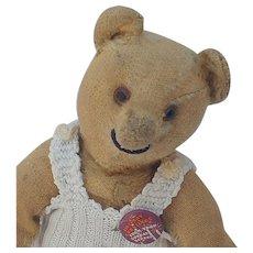 Old Worn to Death But Still Smiling Steiff Teddy Bear