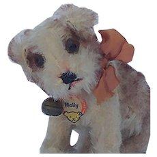 Adorable Little Vintage Steiff Mohair Molly Dog