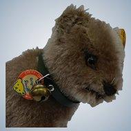 Minty Mint Vintage Little Mohair Steiff Standing Bear Cub on All Fours