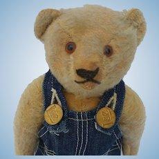 Adorable Old Mohair Steiff Teddy Bear No ID