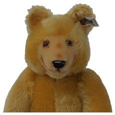 Lovely Vintage LE Steiff Dicky Teddy Bear