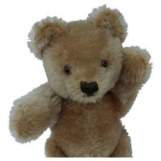 Adorable Vintage Steiff Original Teddy Bear No ID