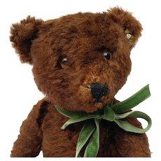 Nice Vintage Chocolate Brown Mohair Steiff Teddy Bear with ID