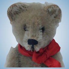 Adorable Vintage Schuco Perfume Teddy Bear with Unusual Gray Mohair Fur