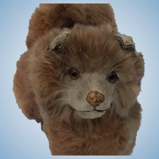 Fabulous Old French Fur Spitz Salon Dog Candy Container For Your Doll in Unusual Brown Fur