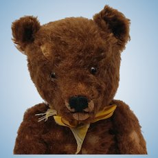 Well Loved Chocolate Brown Mohair Steiff Original Teddy Bear No ID