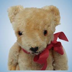 """Cute Little Vintage 8"""" Mohair Teddy Bear"""