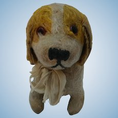 Well Loved Cherished Vintage Mohair Dog with Photo of His Young Boy Owner