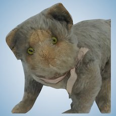 Fabulous Early Steiff Gray and White Mohair Fully Jointed Cat with FF Button