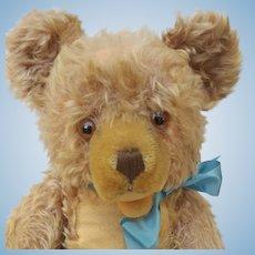 "Well Loved Big 17"" Vintage Mohair Steiff Zotty Teddy Bear No ID"