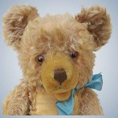 "A Well Loved Big 17"" Vintage Mohair Steiff Zotty Teddy Bear No ID"