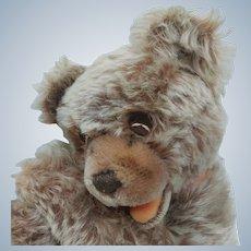 Cutest Vintage Steiff Mohair Floppy Zotty Mama Teddy Bear with Bells No ID