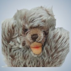 Cutest Vintage Steiff Mohair Floppy Zotty Baby Teddy Bear No ID