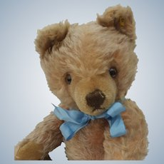 "Handsome Vintage 14"" Steiff Mohair Original Teddy Bear with Button"