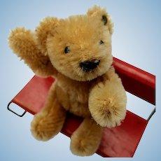 Adorable Little Vintage Steiff Bendy Teddy Bear with Button