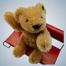 An Adorable Little Vintage Steiff Bendy Teddy Bear with Button