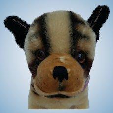 Super Cute Vintage Steiff Bully Dog No ID