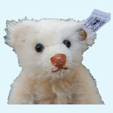 Fabulous LE Steiff Mohair Rattle Teddy Bear Minty with Box Certificate and Shipping Box