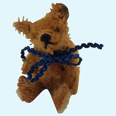 Smallest Little Loved Early Steiff Miniature Mohair Teddy Bear with FF Button