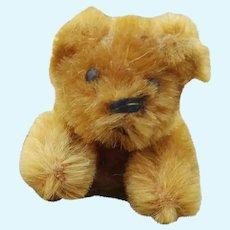 Adorable Tiny Little Older Schuco Miniature Teddy Bear in Light Golden Brown Mohair