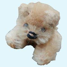 Adorable Tiny Little Older Schuco Miniature Teddy Bear in Beige Mohair