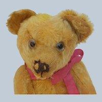Nice Old Vintage Treasured and Well Loved Teddy Bear