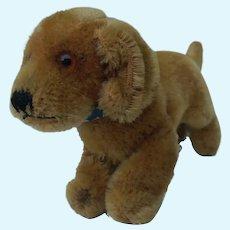 Adorable Vintage Steiff Mohair Bazi Dachshund Dog No ID