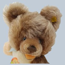 Nice Minty Steiff Lully Mohair Teddy Bear Minty with All ID and Original Bow