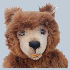 "Fabulous and Minty Big 19"" Steiff Limited Edition of 1200 Mohair Teddy Bear with ID"