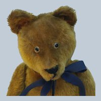 """Endearing Vintage Mohair Well Loved Teddy Bear in Larger 19"""" Size"""