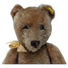 Lovely Vintage Steiff 35 cm Caramel Mohair Original Teddy Bear with Button and Tag