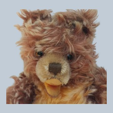 Adorable Vintage Steiff Zotty Teddy Bear with Frosted Cinnamon Mohair Fur No ID