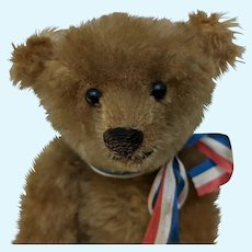 Lovely and Endearing Early Antique Mohair Teddy Bear Steiff? Bing? Early American?