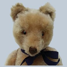 Wonderful Vintage Mohair Steiff Original Teddy Bear with Button