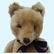 Wonderful Vintage Mohair Steiff Original Teddy Bear with Button