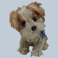 Super Cute Vintage Steiff Mohair Molly Dog No ID