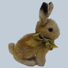 Adorable Little Vintage Steiff Mohair Sonny Bunny Rabbit No ID