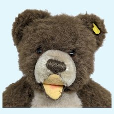 Super Cute Vintage Steiff Brown Zotty Teddy Bear with Button and Yellow ID Label