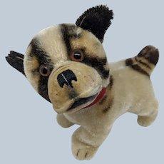 Adorable Vintage Steiff Mohair Bully Dog No ID