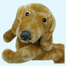 Crazy Cute Vintage Steiff Hexie Dachshund Dog with Button